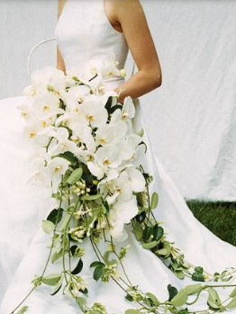 http://m5.paperblog.com/i/5/52616/fancy-bridal-bouquet-ideas-L-BcT6Di.jpeg